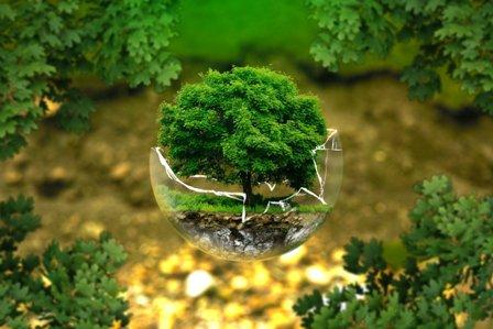 La sostenibilidad, pieza clave de Reputación Empresarial - RSC Ambiental