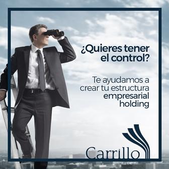 Carrillo Asesores te ayuda a crear estructuras de organización empresarial holding