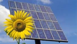 Contrate como prácticas gratuitas a alumnos de energías renovables de FREMM