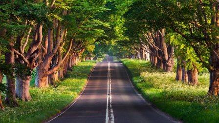FREMM ahorrará tiempo y dinero a sus asociados en los trámites medio ambientales