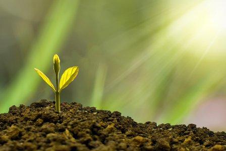 Abierto el plazo de las ayudas para inversiones en eficiencia energética en empresas industriales