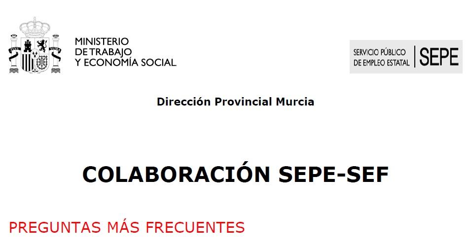 Documentacion aportada por el Servicio de Empleo Publico Estatal (en Relacion a los ERTEs por Coronavirus)